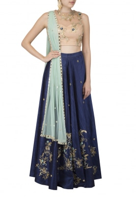 Nude Blouse, Navy Skirt and Dupatta
