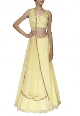 Lemon Delicately Embroidered Crop Top and Skirt with Embellished Waistband
