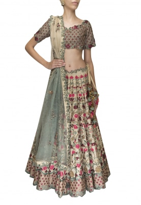 Light Gold Gulnar Hand Embroidered Lehenga Set